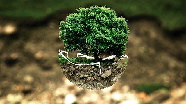 Resoconto delle attività in materia di ambiente